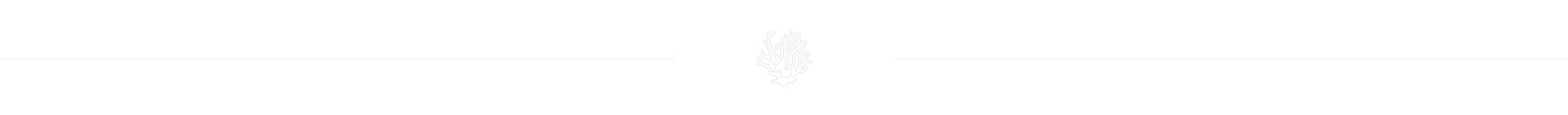 divisor_icono